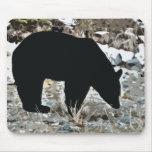 Pasto del cojín de ratón del oso negro alfombrillas de ratón