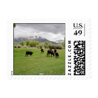 Pasto del ganado v2 sellos