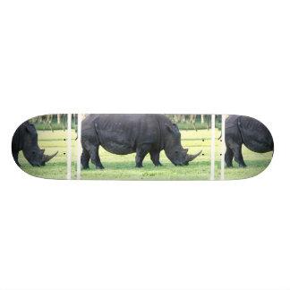 Pasto del monopatín del rinoceronte