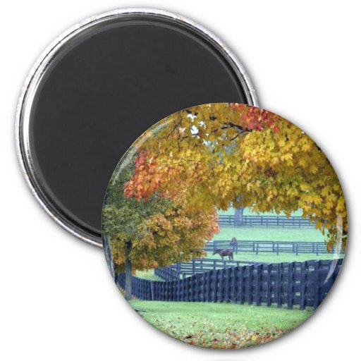 Pasto del otoño imán para frigorifico