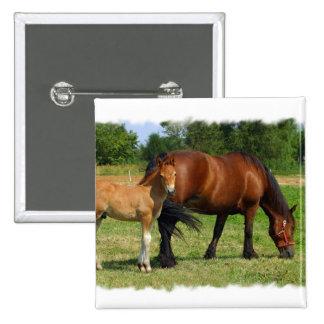 Pasto del Pin del cuadrado de la familia del cabal