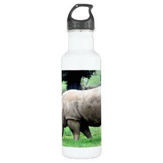 Pasto del rinoceronte blanco