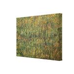 Pasto en la floración de Vincent van Gogh Lona Estirada Galerías