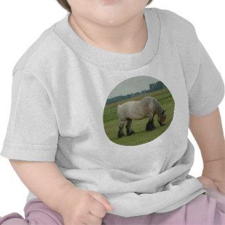 Pasto gris del Caballo-color belga del proyecto Camisetas