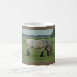 Pasto gris del Caballo-color belga del proyecto Tazas De Café