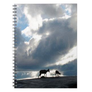 Pasto nublado del cielo libro de apuntes con espiral