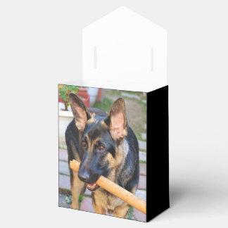 Pastor alemán caja para regalo de boda