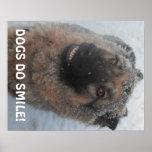 Pastor alemán del poster en la sonrisa de la nieve