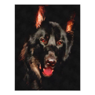 Pastor alemán, perro negro cojinete