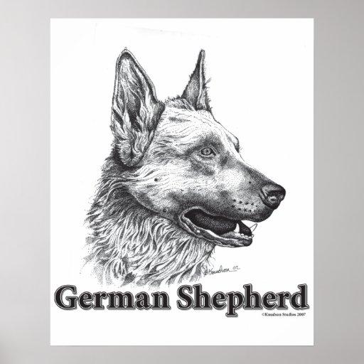 Pastor alemán póster