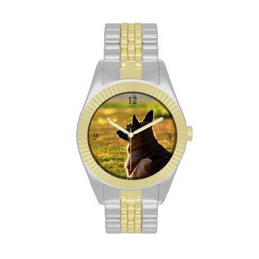 Pastor alemán relojes