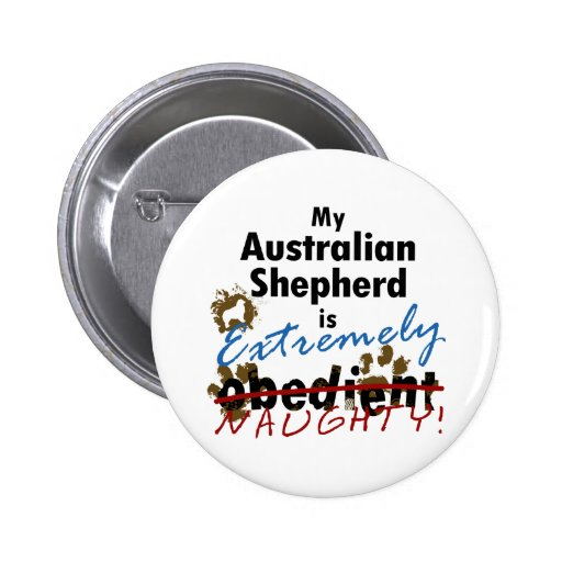 Pastor australiano extremadamente travieso pin