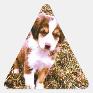 ¡Pastor australiano miniatura! ¡Mini perrito Calcomanía Triangulo