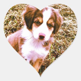 ¡Pastor australiano miniatura! ¡Mini perrito Calcomanía Corazón Personalizadas