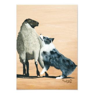 """Pastor australiano pintura de """"un perro pastor fotografía"""