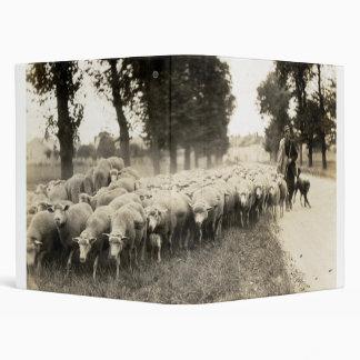 "Pastor de 1921 franceses carpeta 1"""