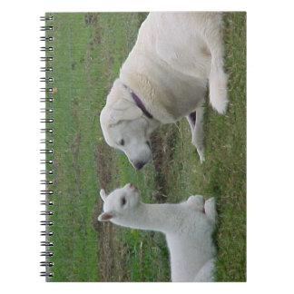 Pastor y alpaca de Anatolia Cria Libro De Apuntes