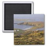 Pastoral Irish Coast 2 Inch Square Magnet