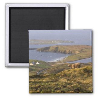 Pastoral Irish Coast Magnet