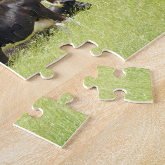Pastoral Puzzles
