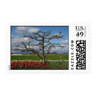 Pastoral Scene Stamps