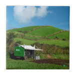 Pasture and dairy equipment tile