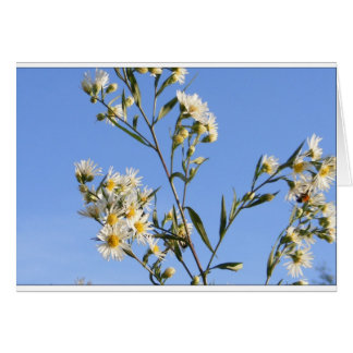 Pasture Flower and Sky Customizable Card