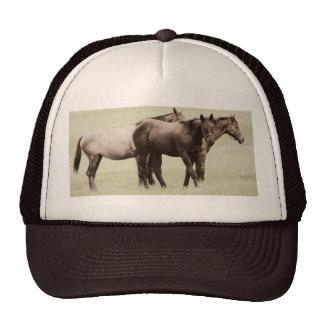 Pasture Pal Hat