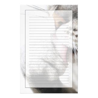 Pata de la limpieza del gato papelería