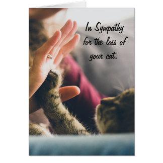 Pata del gato Alta-cinco Tarjeta De Felicitación