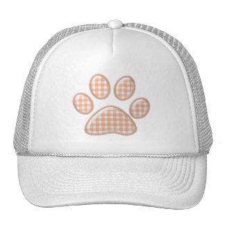 pata del gato de la guinga - naranja gorro de camionero
