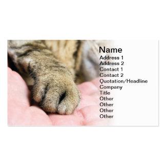 Pata del gato plantilla de tarjeta de negocio