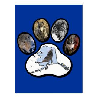Pata del lobo de Alaska Tarjeta Postal