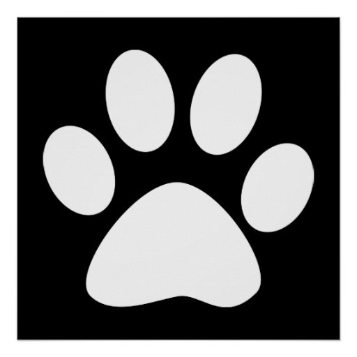 pata del mascota póster