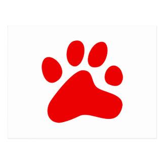 Pata roja del perro postales