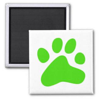 Pata verde del perro iman de nevera