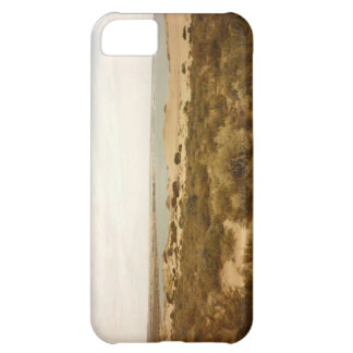 Patagonia iphone cover iPhone 5C cover