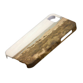 Patagonia iphone cover iPhone 5 cases