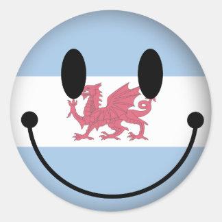 Patagonia Smiley Round Sticker