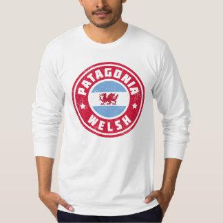 Patagonia Welsh Flag T-Shirt