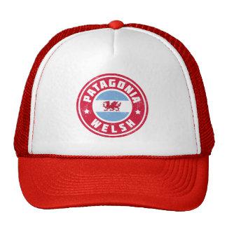 Patagonia Welsh Flag Trucker Hat