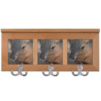 patagonian cavy head view animals capybara coat rack