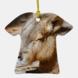 Patagonian Cavy Double-Sided T-Shirt Ceramic Christmas Ornament