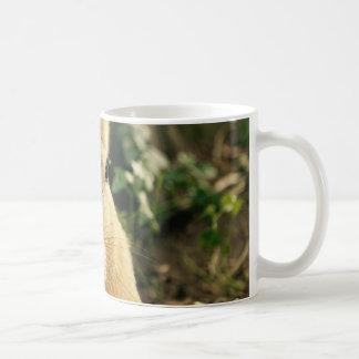 Patagonian Cavys Coffee Mug