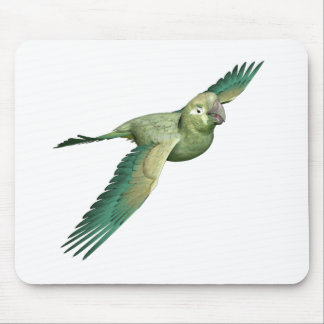 Patagonian Conure Mouse Pad