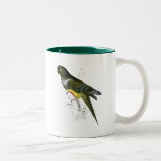 Patagonian Parrakeet-Maccaw by Edward Lear Two-Tone Coffee Mug