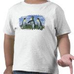 Patagonicus de rey pingüinos, del Aptenodytes), Camiseta