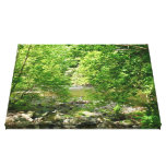 Patapsco River View Maryland Nature Photography Canvas Print