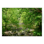 Patapsco River View Maryland Nature Photography Card