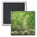 Patapsco River View Maryland Nature Photography Magnet